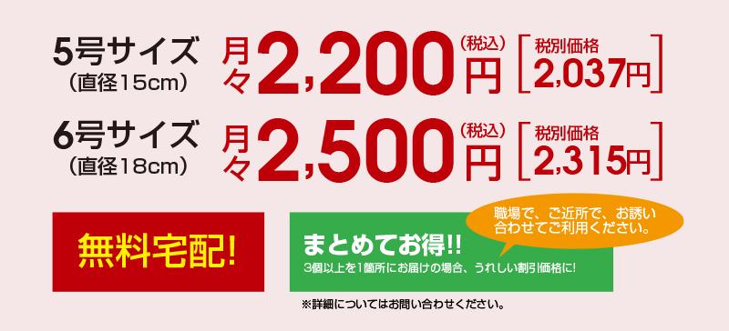 5号サイズ:月々2,200円(税込)/6号サイズ:月々2,500円(税込)無料宅配! まとめてお得!3個以上を1箇所にお届けの場合、うれしい特別価格になります。